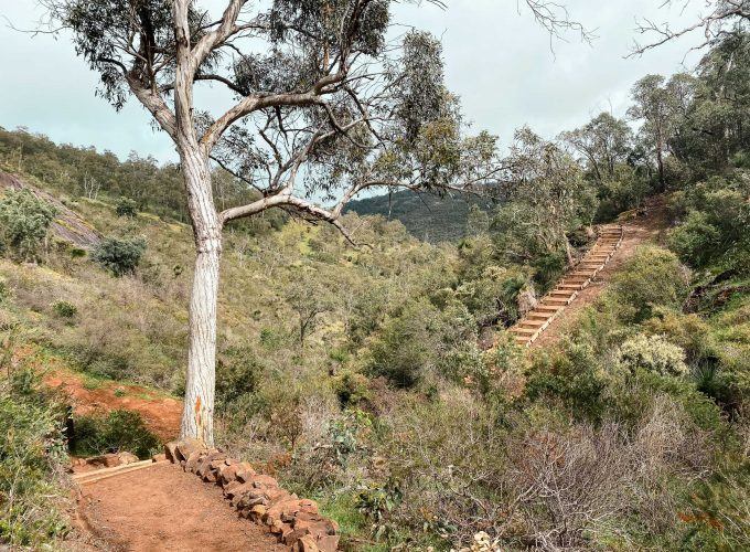 Paruna Wildlife Sanctuary | Numbat Trail Guided Hike