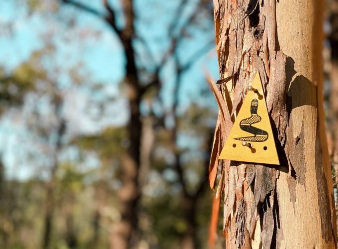 Bibbulmun Track | Kalamunda To Mundaring Weir Guided Hike