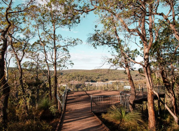 Didgeridoo Delights & Golden Views | Spring Into Parks Edition
