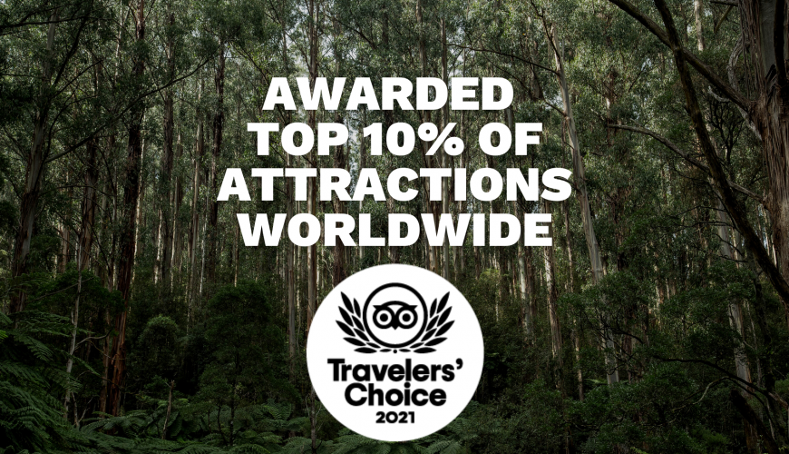 Awarded Top 10% Of Attractions Worldwide